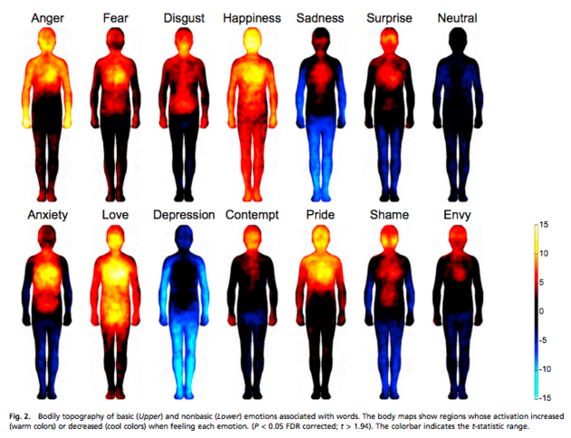 The Body's Physical Reactions to Emotions