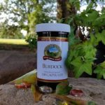 Change for Seasons – Spotlight on Burdock