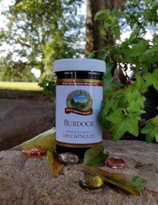Burdock (100 caps) – Stock #140