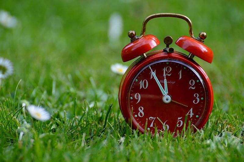 Daylight Saving Time Sunshine House