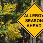 Tips for Overcoming Allergic Rhinitis Naturally